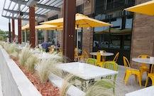Healthful restaurant True Food Kitchen now open in Plano ...