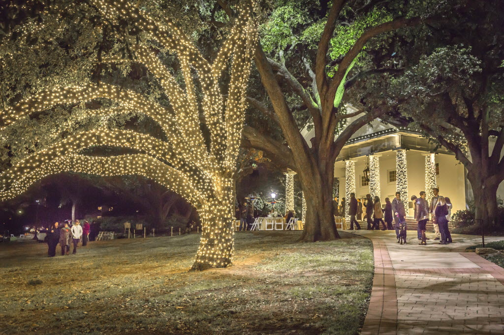 tree lightings and holiday festivals are merrily rolling out all